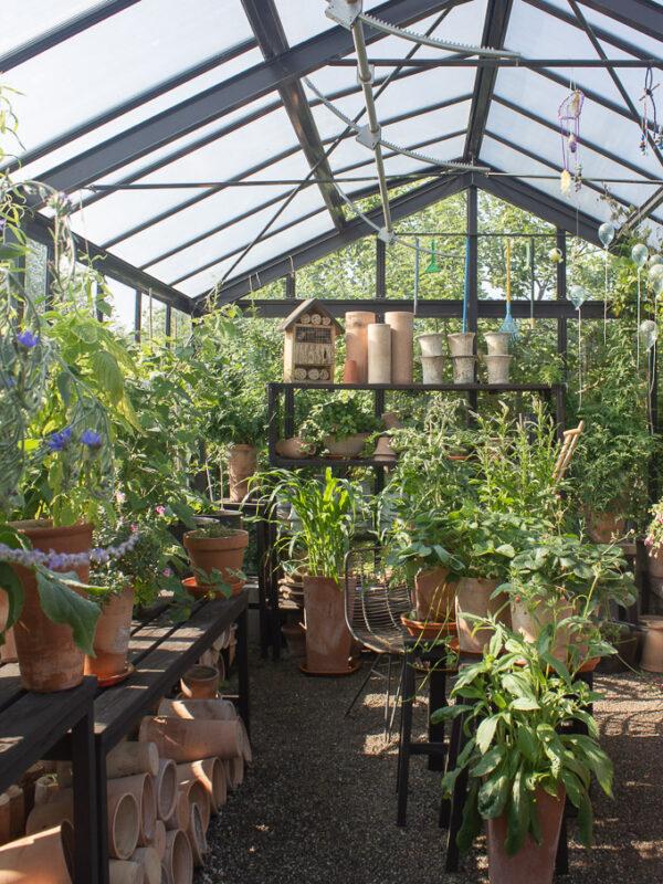 Växthus i Kumla sjöpark