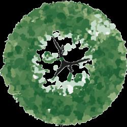 Träd-5